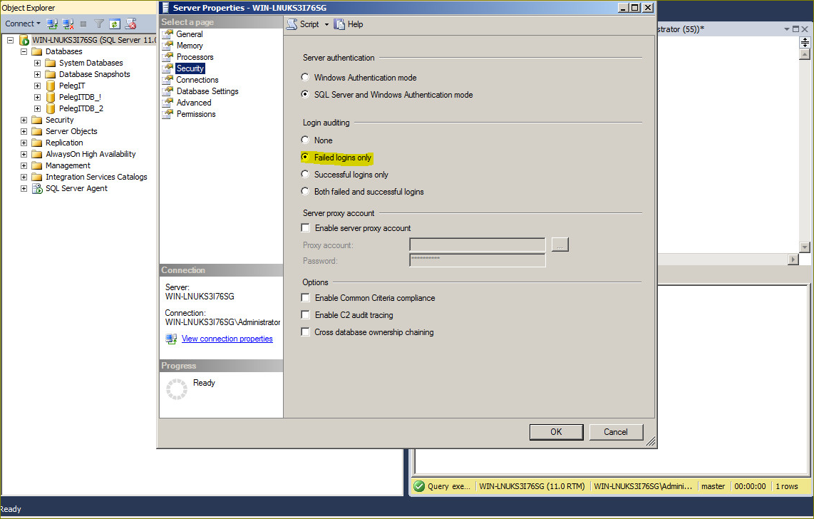 Viewing SQL Server