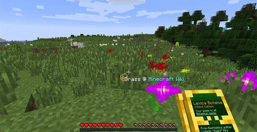 Botania Mod 1.16.5 | 1.15.2 - Mod Minecraft download - Screenshot 3