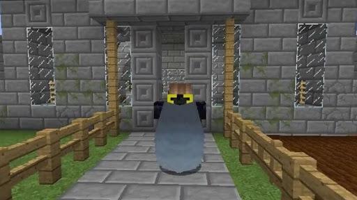 Colytra Mod 1.16.5 | 1.15.2 - Mod Minecraft download - Screenshot 2