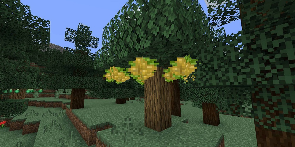 Pam's HarvestCraft 2 – Trees Mod 1.16.5 | 1.15.2 - Screenshot 1
