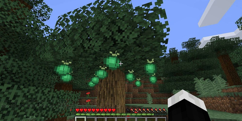 Pam's HarvestCraft 2 – Trees Mod 1.16.5 | 1.15.2 - Screenshot 3